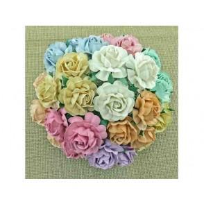 Čajne vrtnice, mix pastelne