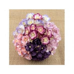 Srčkasti cvetovi, vijola mix