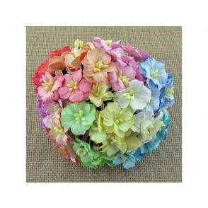 Cvetovi jablane, mix pastelne barve