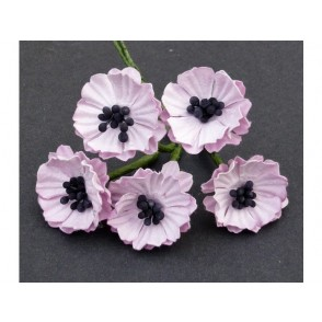 Makovi cvetovi, baby roza