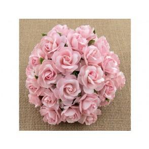 Divje vrtnice, svetlo roza