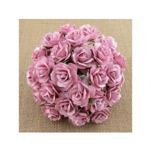 Divje vrtnice, roza