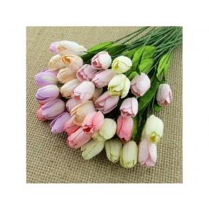 Tulipani, pastelni mix