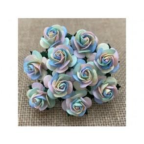 Odprte vrtnice, pastelne mavrične