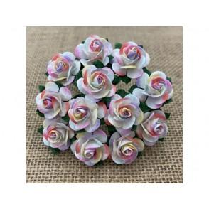 Odprte vrtnice, pastelne mavrične, dva tona
