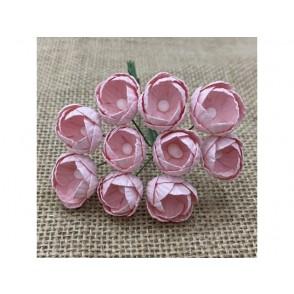 Buttercups, bledo roza