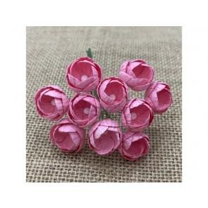 Buttercups, roza