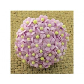 Srčkasti cvetovi, mini, vijola
