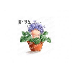 Štampiljka, Hydrangea Baby